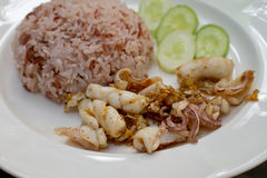Fried garlic pepper squid with brown rice Royalty Free Stock Photography