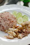 Fried garlic pepper squid with brown rice Stock Photography