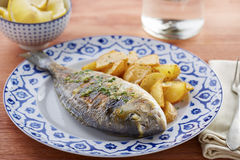 Fried gilt head bream with potatoes Royalty Free Stock Image