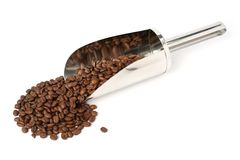 The fried grains of coffee and metal scoop Stock Image