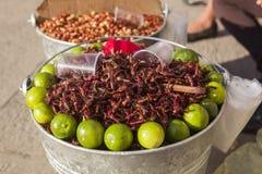 Fried Grasshoppers para la venta, México Imágenes de archivo libres de regalías