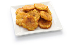 Fried green banana chips Stock Images