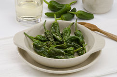 Fried green peppers. Pimientos del Padron. Spanish Cuisine. Royalty Free Stock Images