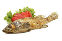 Fried grouper fish Royalty Free Stock Photos