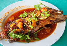 Fried grouper fish with sauce,sour and spicy Royalty Free Stock Image
