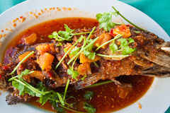 Fried grouper fish with sauce,sour and spicy Royalty Free Stock Photo