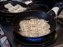 Fried Gyoza in frying pan. Making homemade Japanese dumplings in street food royalty free stock photography