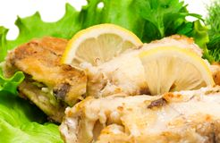 Fried haddock fish, closeup photo Royalty Free Stock Photography