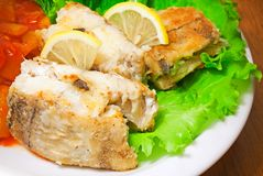Fried haddock fish with vegetables and greens Stock Images