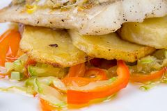 Fried haddock with vegetables Royalty Free Stock Photos