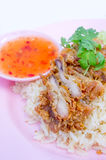 Fried hainanese chicken rice Royalty Free Stock Photography