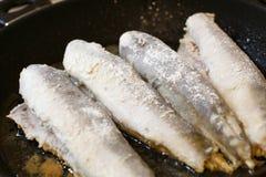 Fried hake fish fillet in a frying pan Stock Image