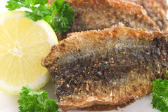 Fried Herring Stock Image