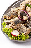Fried herring dish Stock Photography