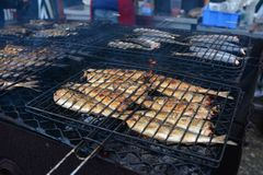 Fried herring on the grill Stock Photos