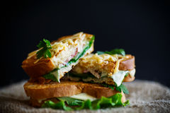 Fried hot sandwich with sausage and salad leaves Royalty Free Stock Images