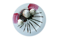 Fried Ice Cream Dessert Lizenzfreie Stockfotografie