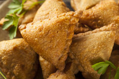 Fried Indian Samosas caseiro Foto de Stock Royalty Free