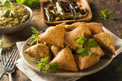 Fried Indian Samosas fait maison Images stock