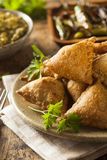 Fried Indian Samosas hecho en casa Imágenes de archivo libres de regalías