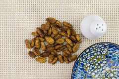 Fried insects with cup. Fried insects with blue cup Stock Photo