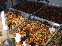Fried insects for sale on the street. Fried silkworms and other insects for sale at a market stall in Bangkok (Thailand Stock Images