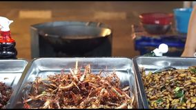 Fried Insects, thai street food stock footage