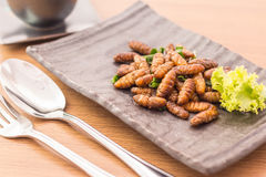 Fried insects Royalty Free Stock Photos