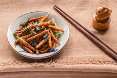 Fried insects - Wood worm insect crispy with pandan after fried Stock Photography