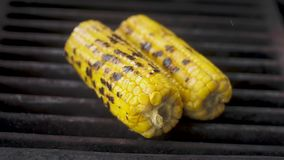 Fried juicy sweet corn is on a hot grill.  Cooking process.  Close-up, slow motion. Fried juicy sweet corn is on a hot grill.  Cooking process.  Close-up, slow stock video