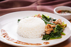 Fried kale with pork. In gravy serve with rice Royalty Free Stock Photography