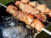 Fried kebab on coals close-up Stock Photography