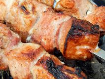 Fried kebab on coals close-up Stock Image