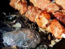 Fried kebab on coals close-up Royalty Free Stock Photo