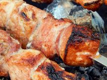 Fried kebab on coals close-up Royalty Free Stock Image