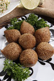 Fried kibbe Royalty Free Stock Photos