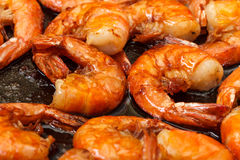 Fried King Prawns in a Frying Pan Stock Images