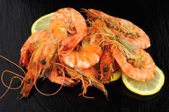 Fried King Tiger Prawns Imagem de Stock Royalty Free
