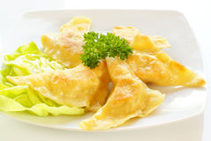 Fried kreplach - Jewish ravioli Stock Image
