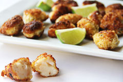 Fried Lobster-Bisse Lizenzfreie Stockbilder