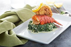 Fried lobster tail. With cremy spinach and lemon stock photography