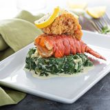 Fried lobster tail. With cremy spinach and lemon royalty free stock image