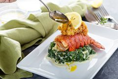 Fried lobster tail. With cremy spinach and lemon stock images