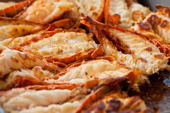 Fried lobsters Royalty Free Stock Photography