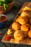 Fried Mac and Cheese Bites Stock Photography