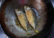 Fried mackerel, Bee Fried mackerel in pan Royalty Free Stock Images