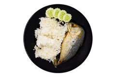 Fried Mackerel with brown rice Stock Images