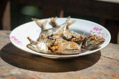 Fried mackerel Royalty Free Stock Photos