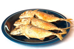 Fried Mackerel. On dish ready to be served over white background royalty free stock images