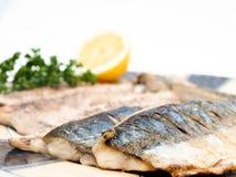Fried mackerel filet Royalty Free Stock Photos